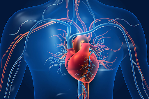 Medical Treatment for Cardiovascular Disease